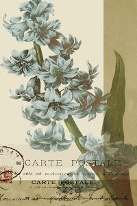 French Blue III by W. Green-Aldridge
