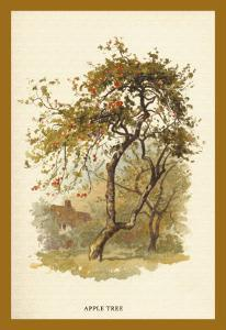 Apple Tree by W.h.j. Boot