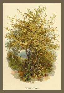 Hazel Tree by W.h.j. Boot