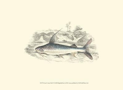 Lizars' Game Fish IV