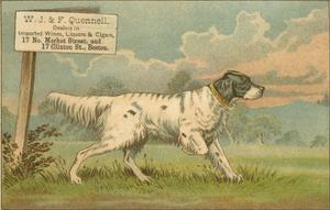 W.J. and F. Quennell Trade Card with an English Setter