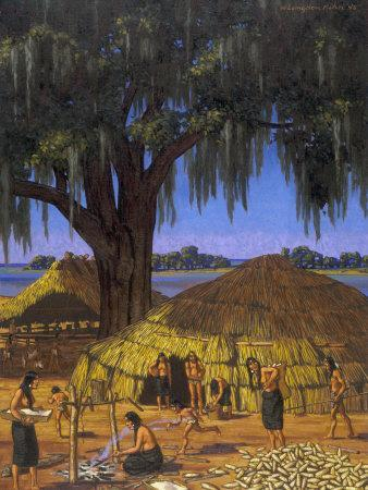 Choctaws in Louisiana Bayou Country Harvest Corn