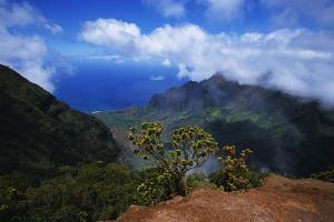 Hills along the Napali Coast by W. Perry Conway
