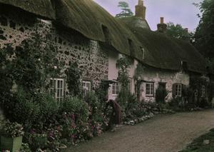 A Woman Tends to Flowers Along the Windows of English Thatched Roofs by W. Robert Moore
