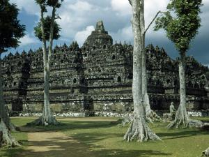 Woman Stands in Shade Beside Tall Trees Near Borobudur Temple by W. Robert Moore