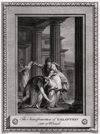 The Transformation of Galanthis into a Weasel, 1777