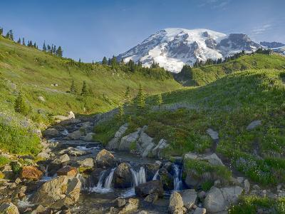 Wa, Mount Rainier National Park, Mount Rainier and Edith Creek-Jamie And Judy Wild-Photographic Print