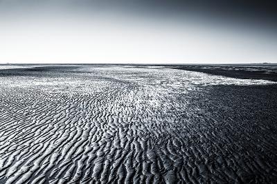 Wadden Sea- Stocker-Photographic Print