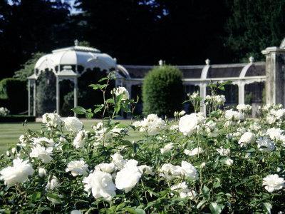 https://imgc.artprintimages.com/img/print/waddesdon-manor-garden-england_u-l-p4vuvc0.jpg?p=0