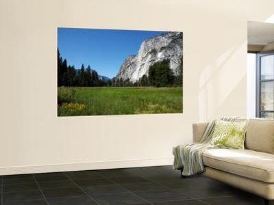 Yosemite Valley from Valley Floor