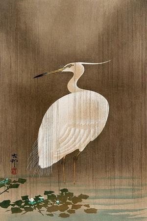 https://imgc.artprintimages.com/img/print/wading-egret_u-l-pnaart0.jpg?p=0