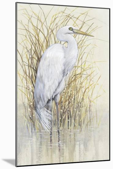 Wading I-Tim O'Toole-Mounted Art Print