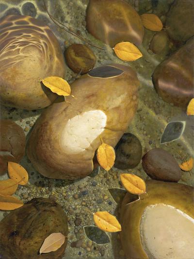 Wading-Stephen Stavast-Giclee Print