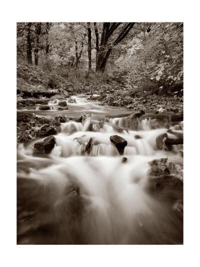 Wahkeena Creek Crop-Alan Majchrowicz-Art Print