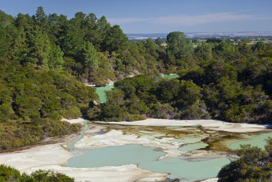 Wai-O-Tapu Thermal Wonderland, Bay of Plenty, North Island, New Zealand-Rainer Mirau-Photographic Print