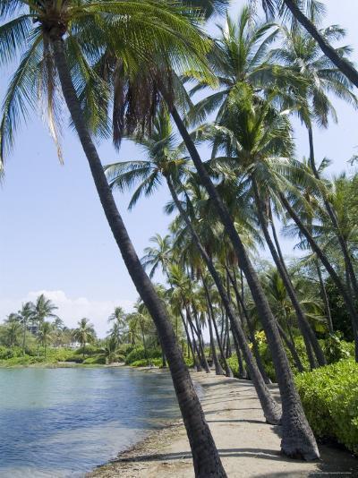 Waikaloa Beach, Island of Hawaii (Big Island), Hawaii, USA-Ethel Davies-Photographic Print