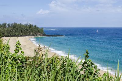 Waikoko Beach, Kauai, Hawaii, United States of America, Pacific-Michael DeFreitas-Photographic Print