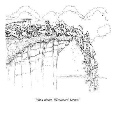 https://imgc.artprintimages.com/img/print/wait-a-minute-we-re-lemurs-lemurs-new-yorker-cartoon_u-l-pgqpmm0.jpg?artPerspective=n