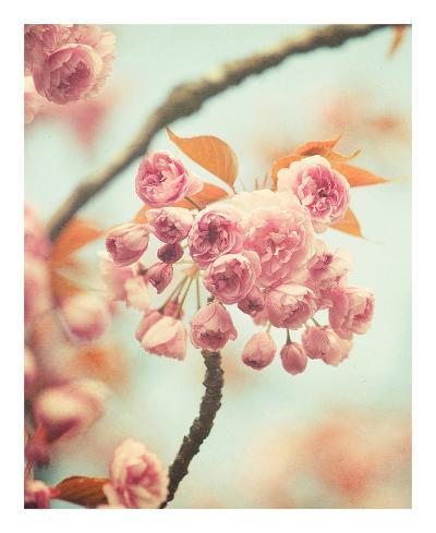 Waiting For Spring-Irene Suchocki-Art Print