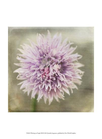 Waiting on Purple XII-Jennifer Jorgensen-Art Print
