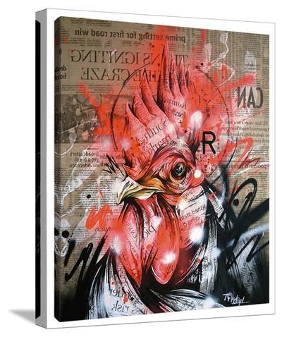 Wake-Taka Sudo-Stretched Canvas Print