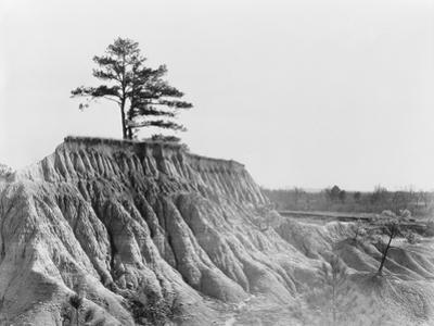 Erosion near Jackson, Mississippi, 1936