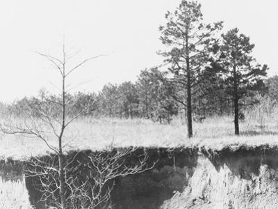 Erosion near Oxford, Mississippi, 1936