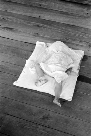 Squeakie asleep in Hale County, Alabama, 1936