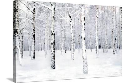 Walking in a Winter-Parker Greenfield-Stretched Canvas Print