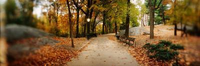 Walkway in a Park, Central Park, Manhattan, New York City, New York State, USA--Photographic Print