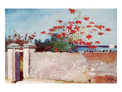 Wall, Nassau, c.1898-Winslow Homer-Premium Giclee Print
