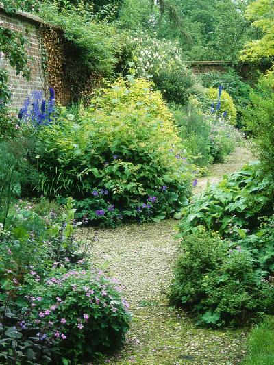 Walled Garden, Winding Path Through Herbaceous Border-Lynn Keddie-Photographic Print