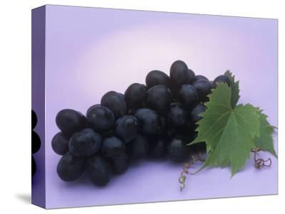 Black Seedless Grapes, Black Beauty Variety (Vitis)