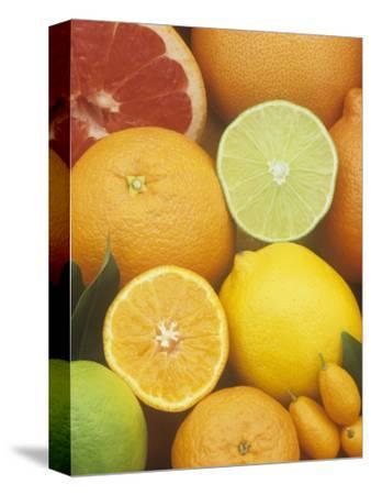 Citrus Fruits: Grapefruit, Lemon, Lime, Tangerine, Tangelo, Orange, Clementine and Kumquat
