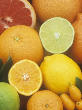 Citrus Fruits: Grapefruit, Lemon, Lime, Tangerine, Tangelo, Orange, Clementine and Kumquat by Wally Eberhart