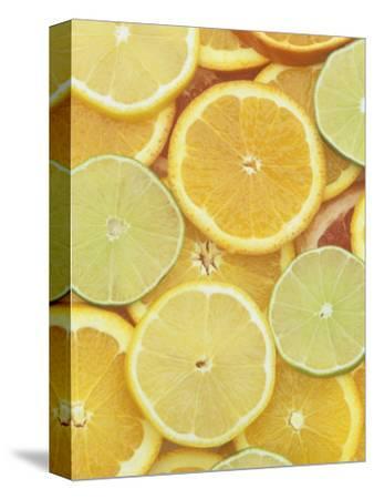 Citrus Slices. Lemon, Lime, Orange, Grapefruit and Tangerine