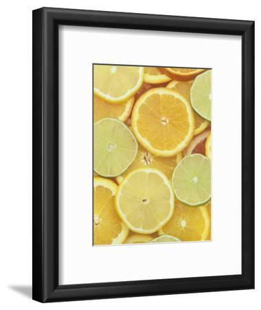 Citrus Slices. Lemon, Lime, Orange, Grapefruit and Tangerine