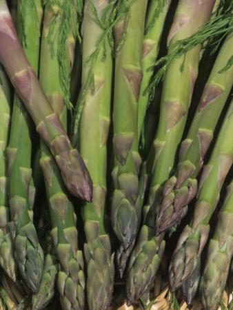 Mary Washington Variety of Asparagus in a Harvest Basket (Asparagus Officinalis) by Wally Eberhart
