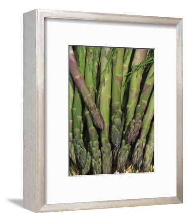 Mary Washington Variety of Asparagus in a Harvest Basket (Asparagus Officinalis)