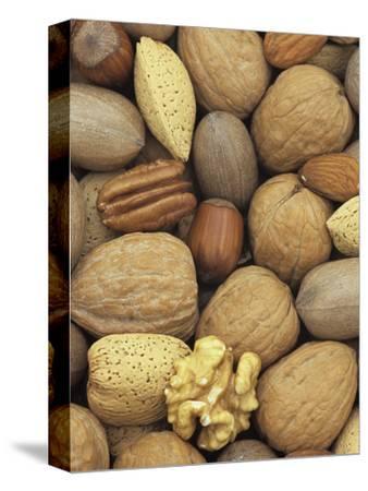 Mixed Nuts: Almond, Hazel, Pecan, and Walnut