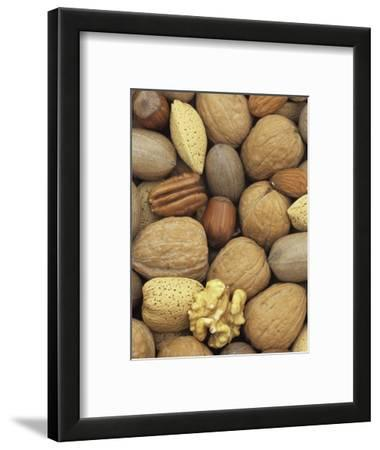 Mixed Nuts: Almond, Hazel, Pecan, and Walnut