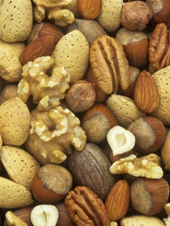 Nuts, Pecan, Walnut, Hazel and Almond by Wally Eberhart
