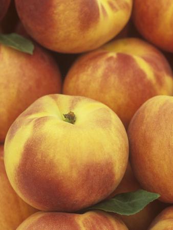 Peaches (Prunus Persica) by Wally Eberhart