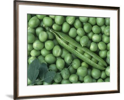 Peas, Frosty by Wally Eberhart