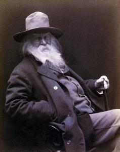 Walt Whitman American Poet, Author, and Journalist in 1877 Portrait
