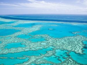 Aerial of the Great Barrier Reef, Whitsunday Coast, Queensland, Australia by Walter Bibikow