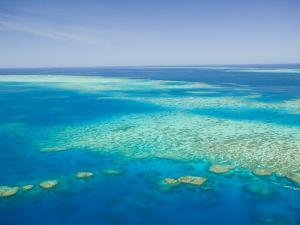 Aerial View of Moore Reef, The Great Barrier Reef, Cairns Area, North Coast, Queensland by Walter Bibikow