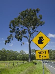 Australia, Queensland, Fraser Coast, Maryborough, Koala Crossing Sign on the Bruce Highway by Walter Bibikow