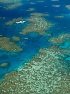 Australia, Queensland, North Coast, Cairns Area, Great Barrier Reef, Aerial View of Moore Reef by Walter Bibikow