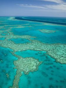 Australia, Queensland, Whitsunday Coast, Great Barrier Reef, Aerial View by Walter Bibikow